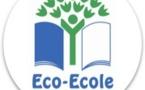 L'opération pédagogique « La Forêt s'invite à l'École »